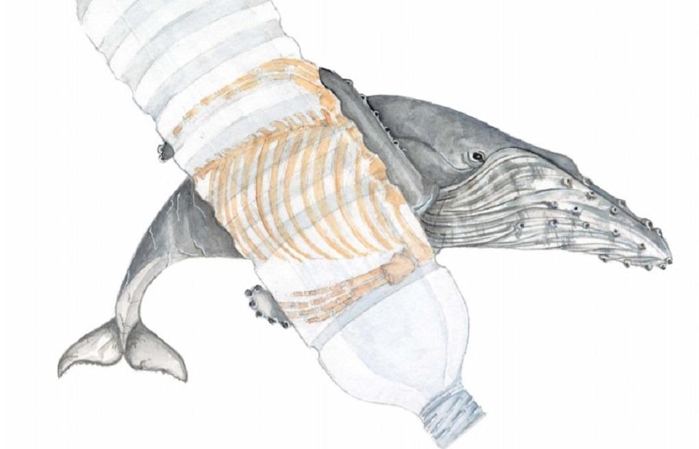 229.000 τόνοι πλαστικών διαρρέουν στη Μεσόγειο Θάλασσα κάθε χρόνο – Αίγυπτος, Ιταλία και Τουρκία, οι μεγαλύτεροι ρυπαντές