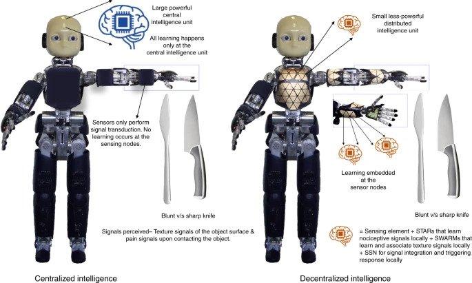 Σιγκαπούρη: Οι επιστήμονες σχεδίασαν ένα ρομπότ που νιώθει πόνο