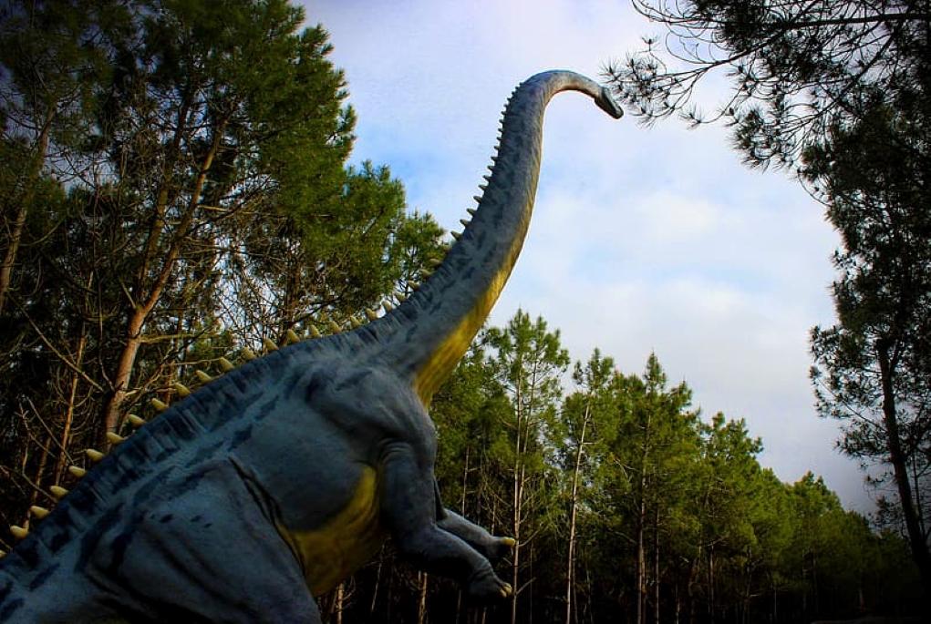 Βροχή εκατομμυρίων ετών «έστρωσε» το δρόμο για την εμφάνιση των δεινοσαύρων