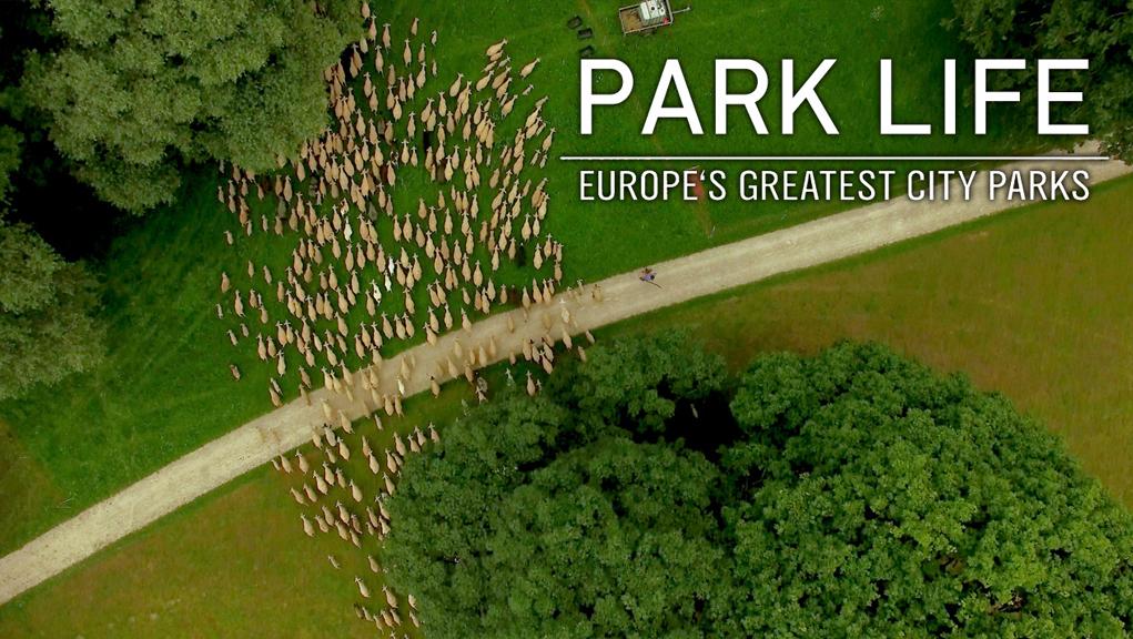 ΕΡΤ3 – Βόλτα στο πάρκο – Σειρά ντοκιμαντέρ – Α᾽ προβολή (trailer)